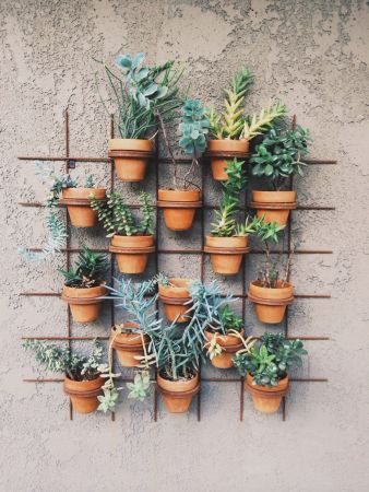41-a-vertical-garden-idea-for-small-spaces-garden-homebnc