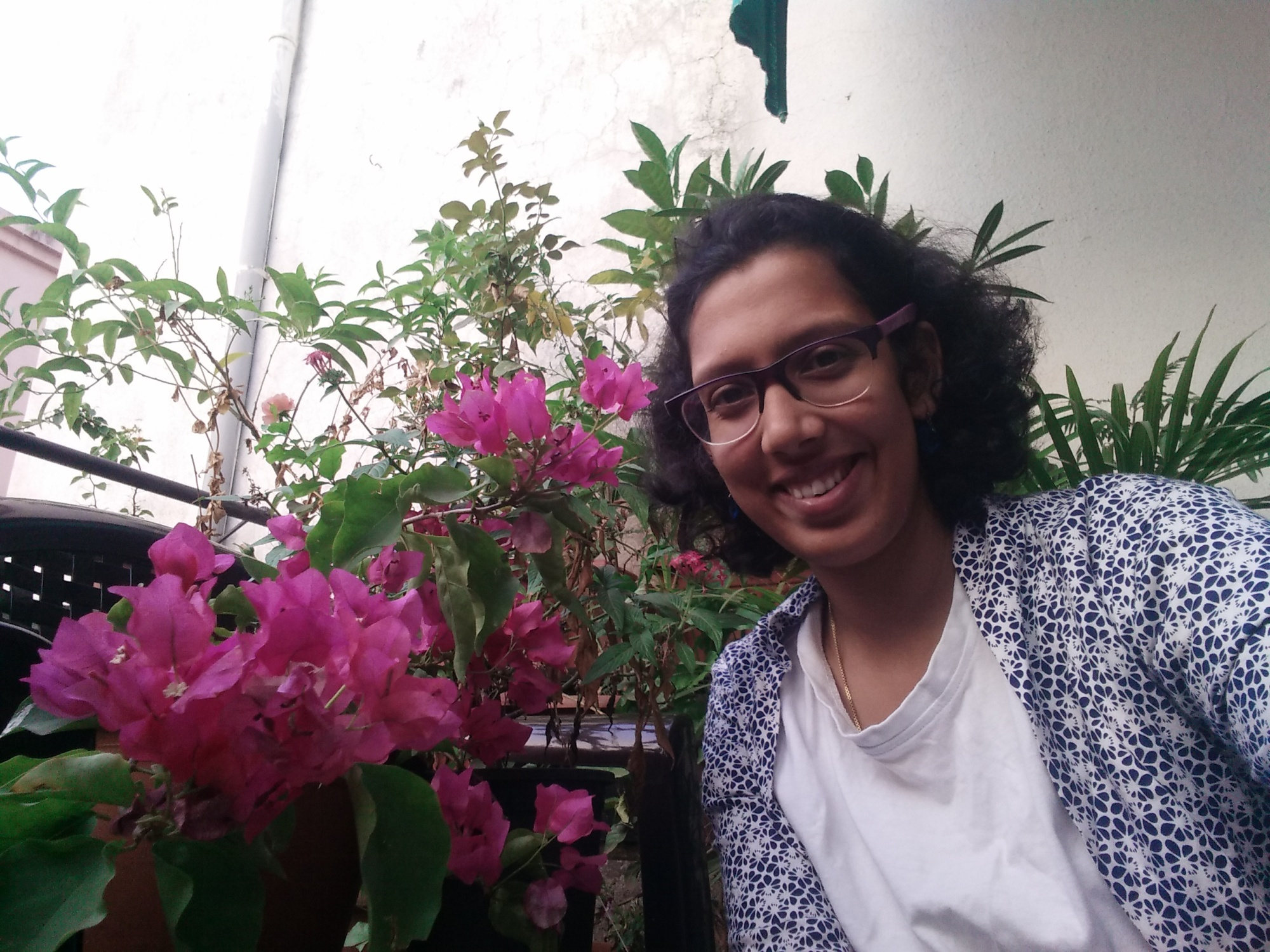 Bougainvillea and me
