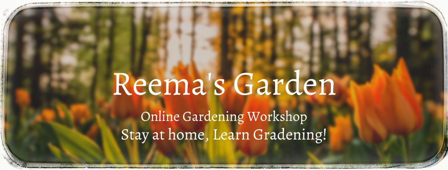 Online Gardening Workshop