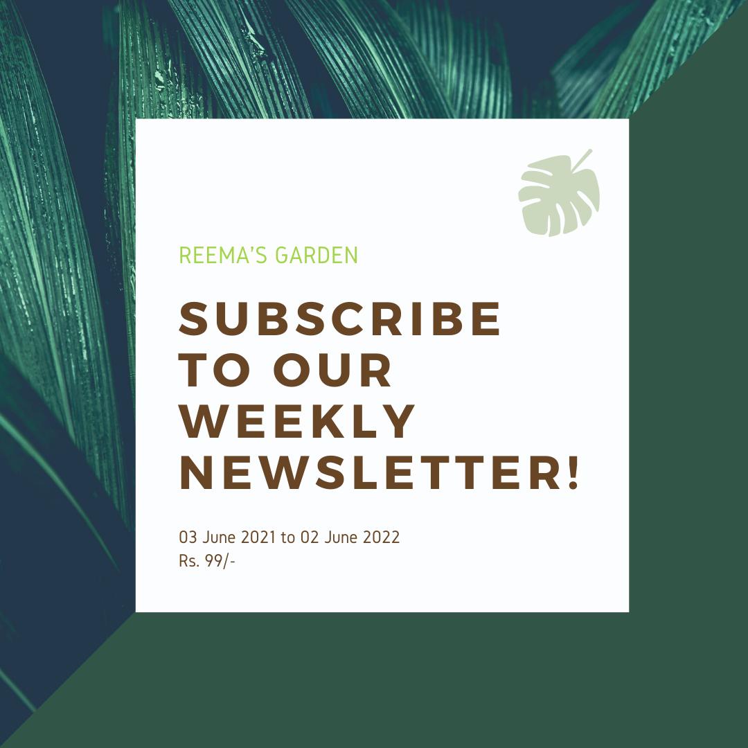 E-newsletter subscription image